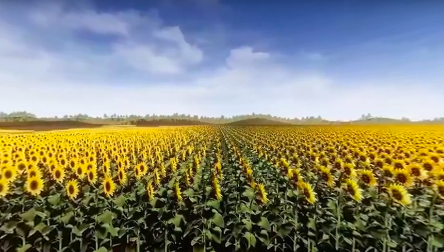 VR VIDEO FOR SYNGENTA AGRO COMPANY