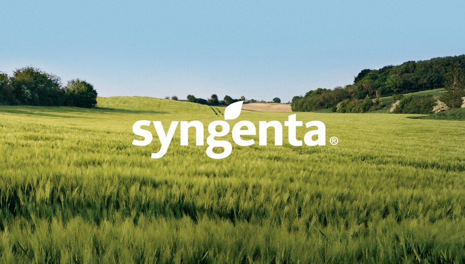 SYNGENTA VR VIDEO. PICCOLO MACHINE